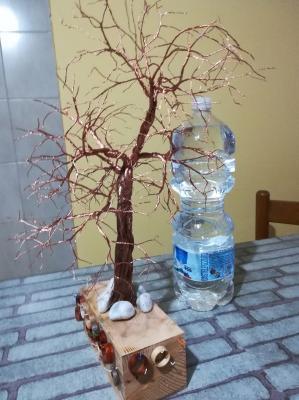 albero_44